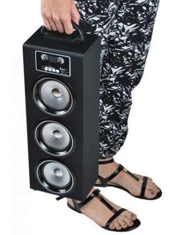Bluetooth įkraunamas nešiojamas   garsiakalbis  su FM, MP3
