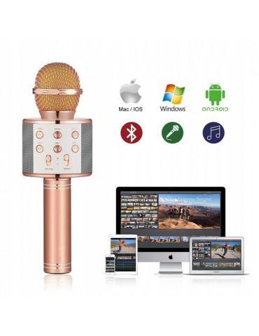 Karaoke mikrofonas, Buetooth su garsiakalbiais