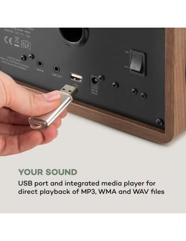 Auna  Connect 100 SE internetinis radijas. Rudas